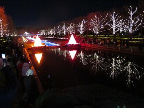 101225 カニ X's パーティ 昭和記念公園イルミ 145.JPG
