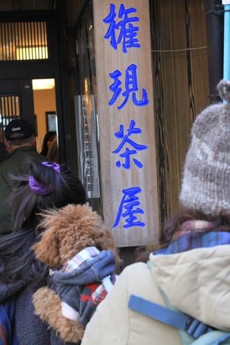 110116 アニーと高尾山 131.JPG